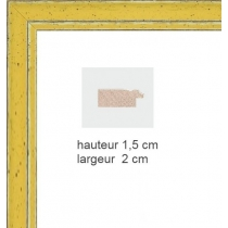 Hauteur en cm: 15 Largeur en cm: 21.5 Dos du cadre: Dos Medium 3 mm Face avant: Plexiglas 1mm Accroche du cadre: Vertical