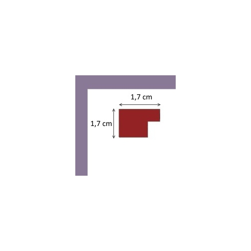https://www.cadres-photos.eu/20310-26711-thickbox/cadre-plat-violet-mat.jpg