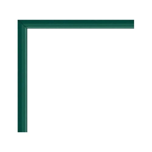 https://www.cadres-photos.eu/2491-9036-thickbox/cadre-aluminium-vert.jpg
