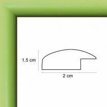 profil cadre photo arrondi vert anis
