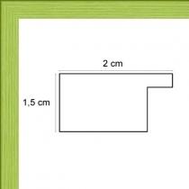 profil cadre photo plat vert anis