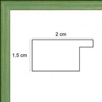 profil cadre photo plat vert foncé