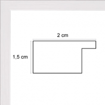 profil cadre photo plat blanc
